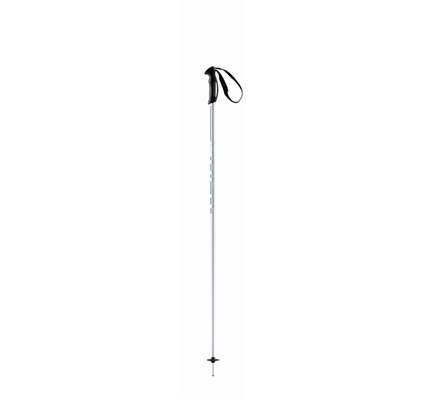 Picture of Head Multi Silver ski Pole