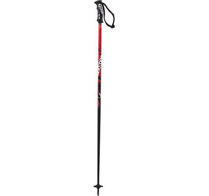 Picture of Salomon Artic Poles Red/Black